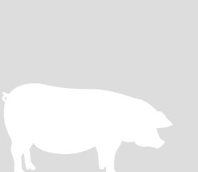 畜産物の紹介
